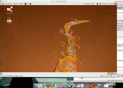 ubuntu default background by you.