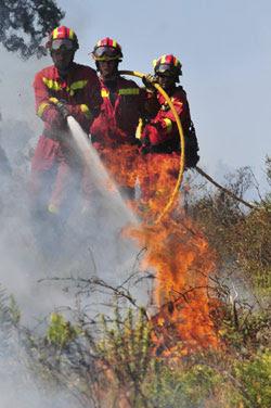 Cataluña recorta la partida antiincendios más del doble que la de sus 8 televisiones