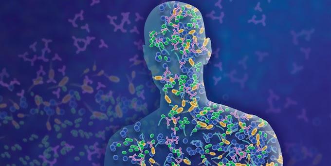 Probiotic Student Internship In Digdoh   Internship For Probiotic Students In Nagpur   Biointernships