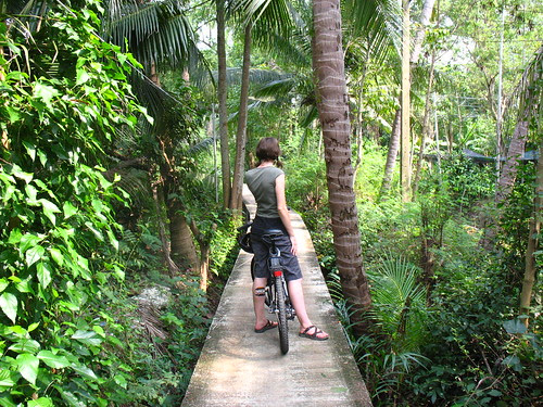 Bikes in Bang Kachao