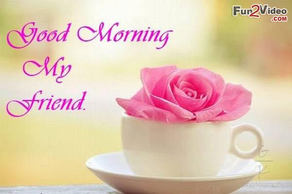 Good Morning Friend Imagexxl