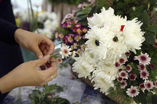 flores que nos dan luz