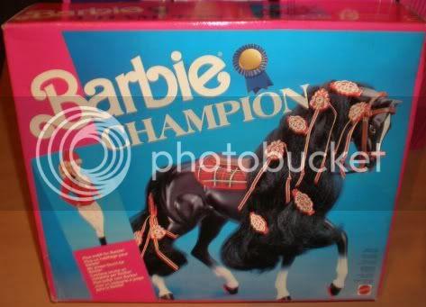 1991 Champion