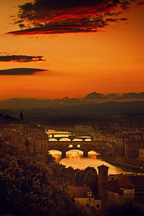 Four Bridges of Florence(by Yuliya Bahr)