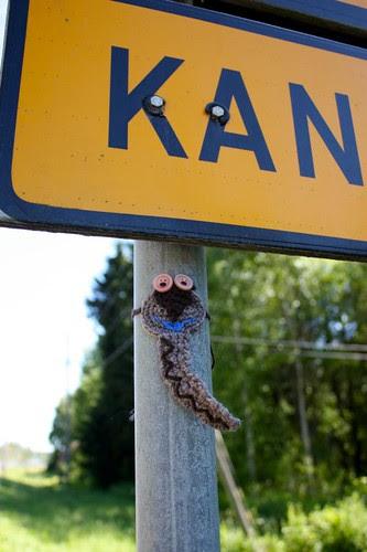 Kalle kyykäärme Kankaanpäästä