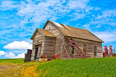 Palouse Old barn