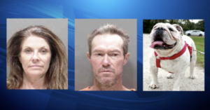 Dog Stolen In 2015 Is Found With Criminals Nearly 3,000 Miles Away