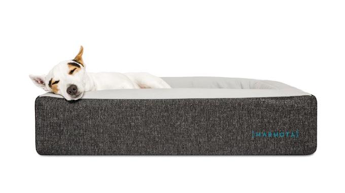 Así es el colchón específico para perros