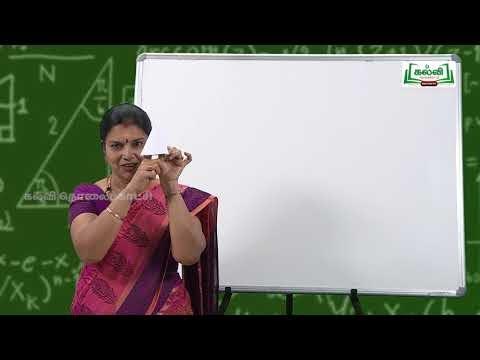 10th Tamil 3 பண்பாடு உரைநடை உலகம் விருந்து போற்றுதும் Kalvi TV