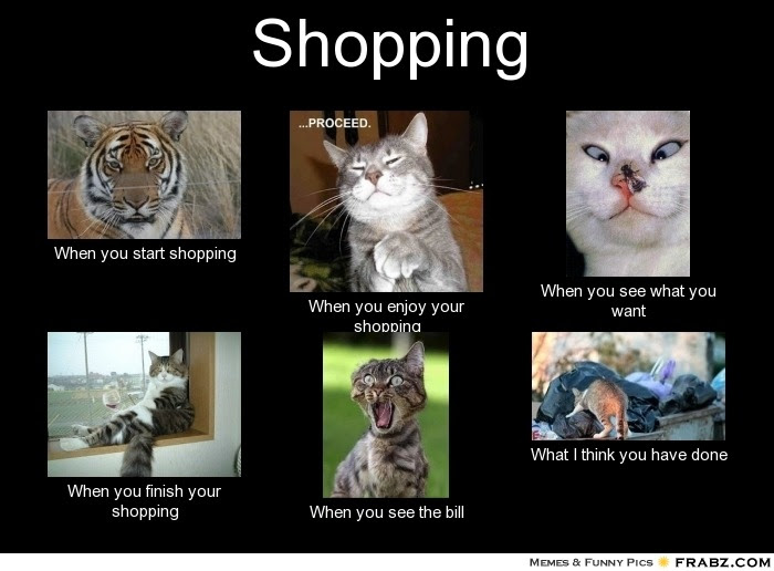 Cats are great shoppers.