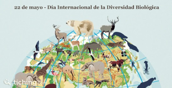 Diversidad Biologica | Tiching