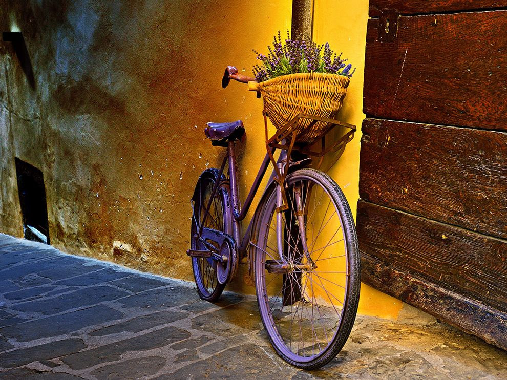 Flower bike in Tuscany