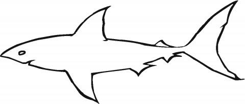 hammerhead shark outline  clipart panda  free clipart images