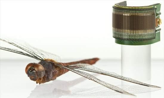 Olho artificial inspirado em insetos está pronto para uso