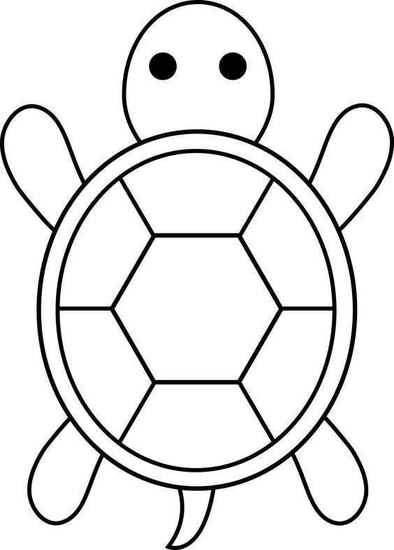 Kaplumbaga Boyama Sayfasi 3 Okul öncesi Etkinlik Faliyetleri