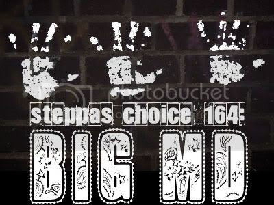 Steppas Choice 164