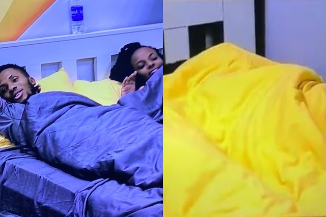 #BBNaija: Watch Brighto And Wathoni Engage In Aggressive KNACKING Under The Duvet In Broad Daylight Again! (Video)