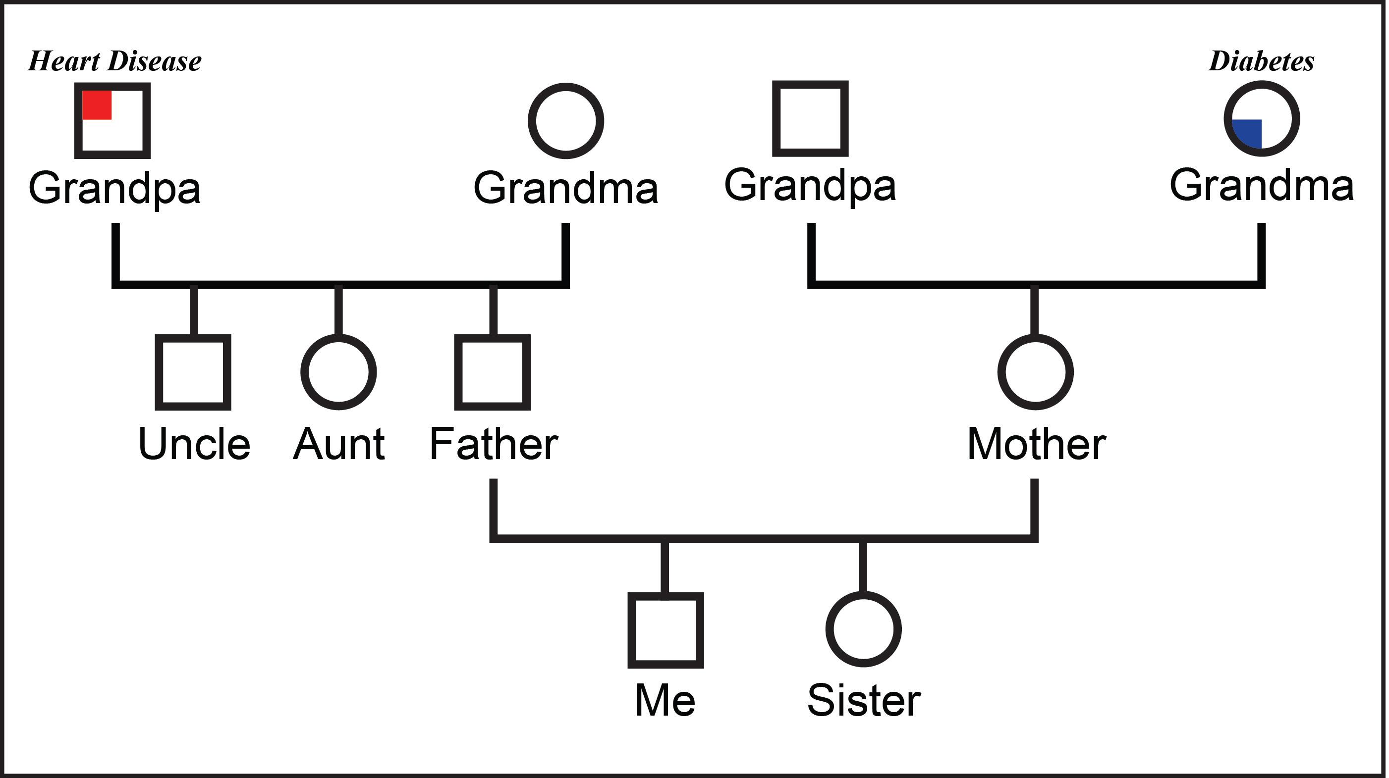 3 Generation Genogram Template from lh6.googleusercontent.com