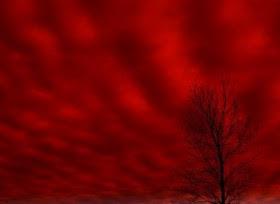 http://www.tribunnews.com/foto/bank/images/langit_merah.jpg
