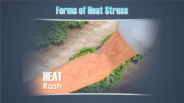 Heat Stress Prevention Training Video - Convergence Training