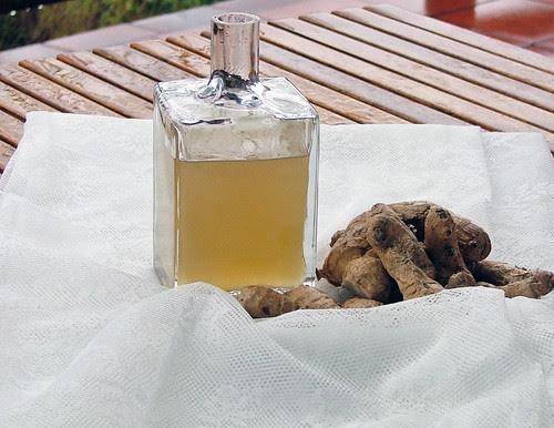 ginger sirup - sciroppo di zenzero