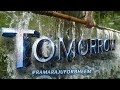 #RamarajuForBheemTomorrow - NTR, Ram Charan, Ajay Devgn, Alia Bhatt, Oli...