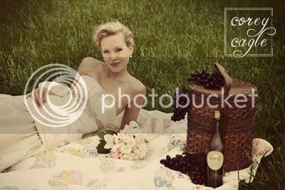 picnic bridal portrait at biltmore
