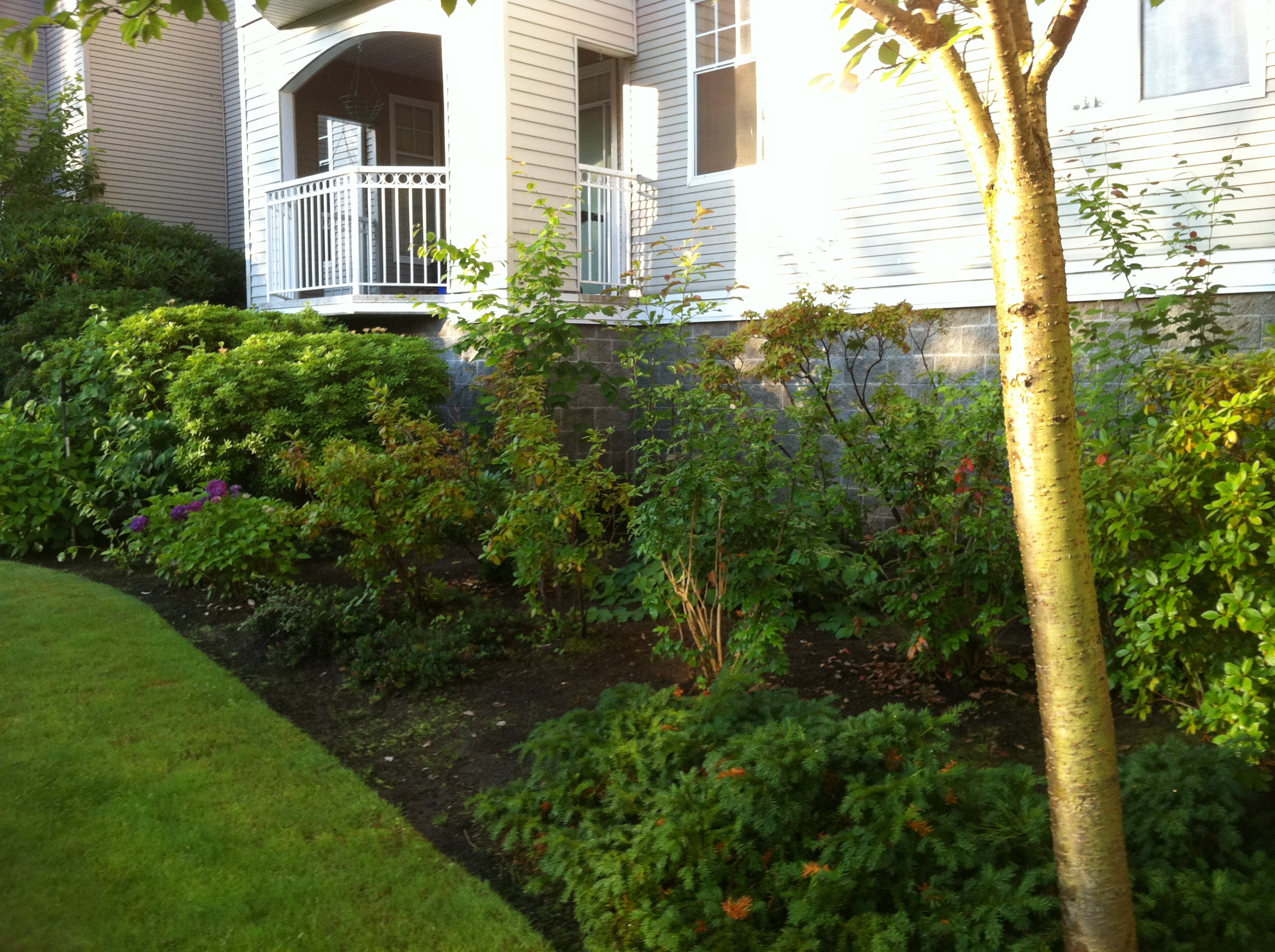 Greater Vancouver Septic System And Drainage Company Vancouver Lower