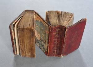 Los libros siameses5