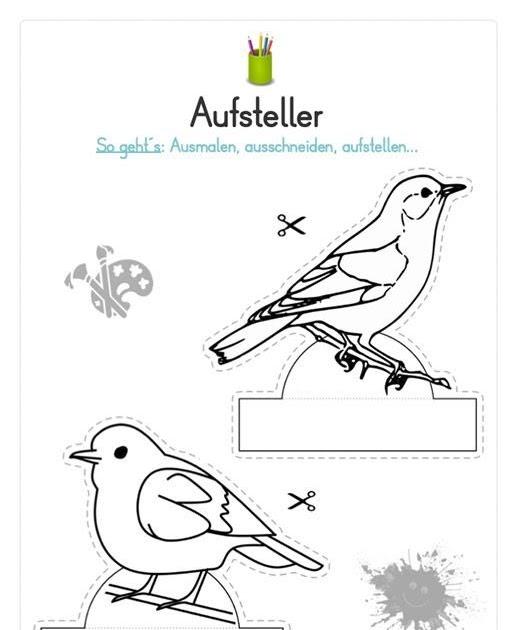 heimische vögel im winter ausmalbilder  dorothy meyer