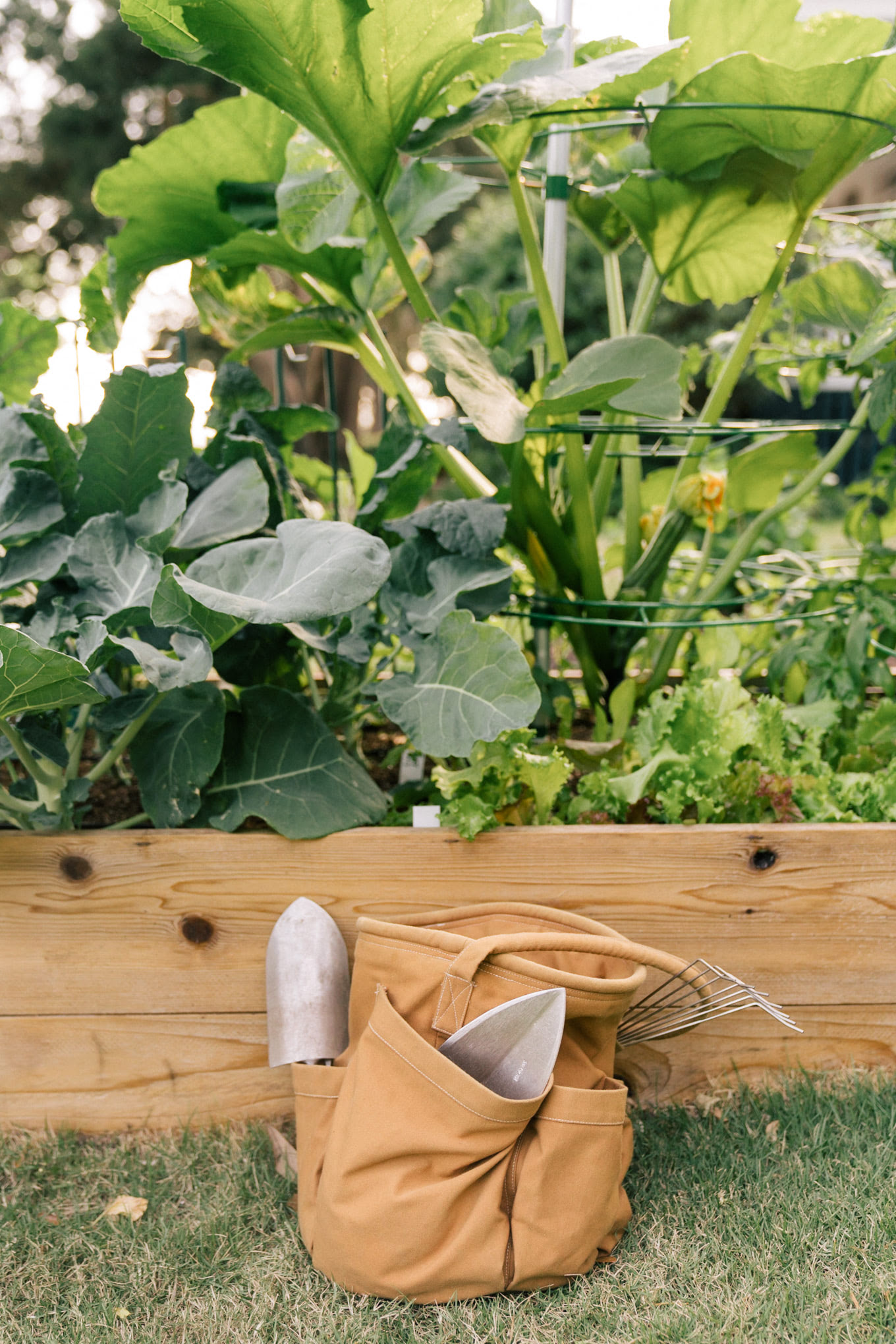 fall gardening planting
