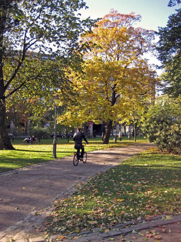 En bicicleta por el parque
