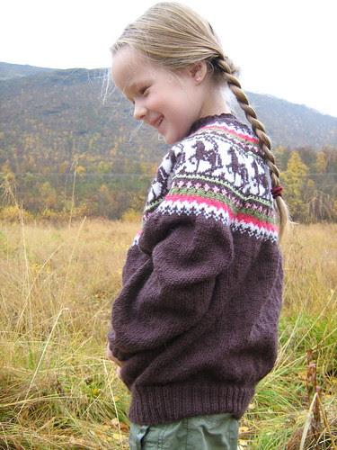 horsesweater1