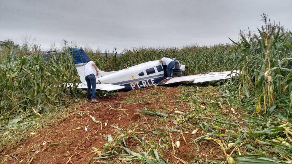 Avião estava em meio a plantação de milho, em Mundo Novo (Foto: Polícia Civil/ Divulgação)