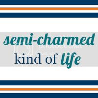 Semi-Charmed Kind of Life