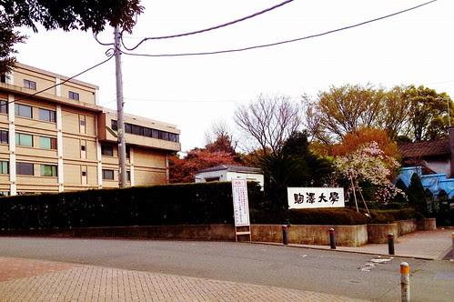 駒澤大学 by cinz