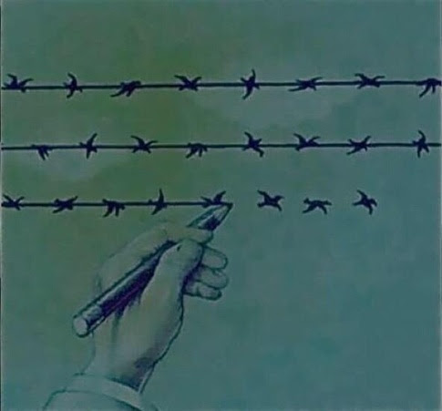 barbed wire and birds