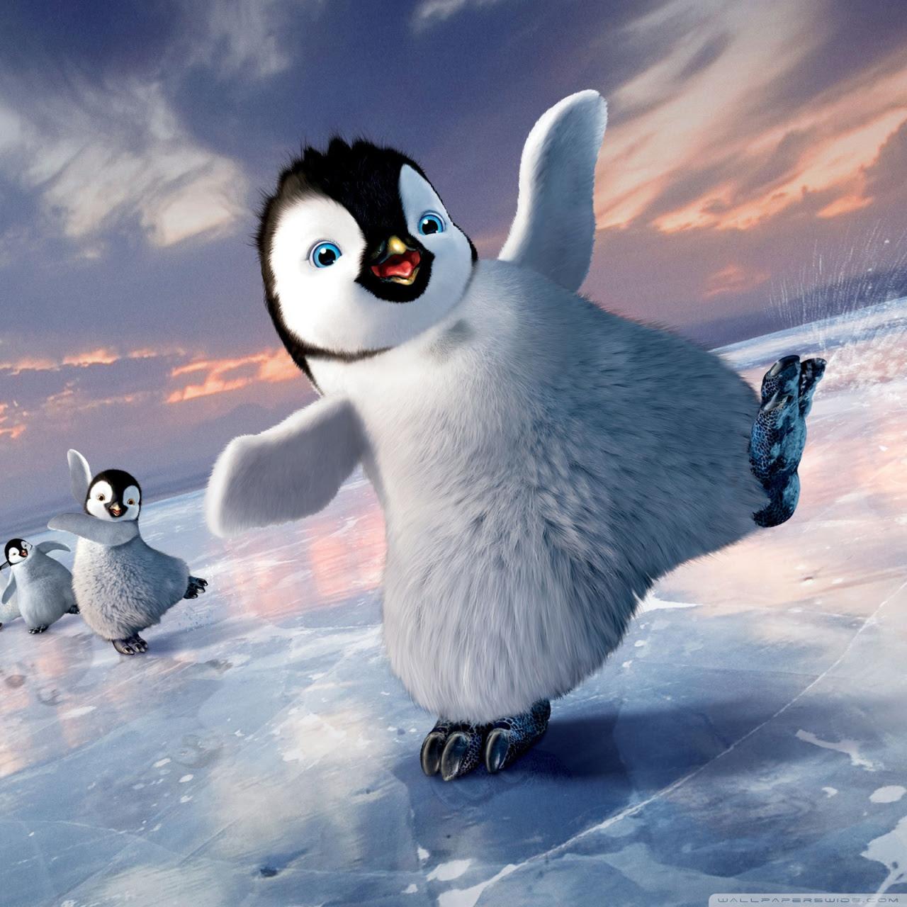 Baby Penguin Wallpapers Desktop Animals Wallpaper Timmatic