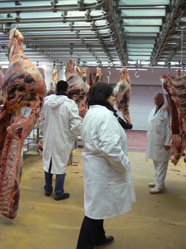 juliette à la viande.jpg