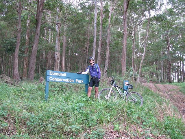 Eumundi Forest