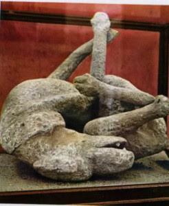 Kim M Kimselius hund från Pompeji