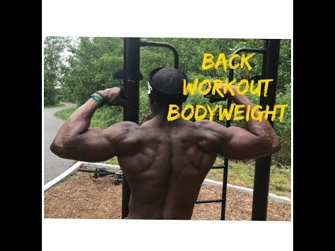 back workout for mass without using weights  back  bicep