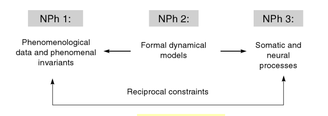Figure 11.2-Neurophenomenology
