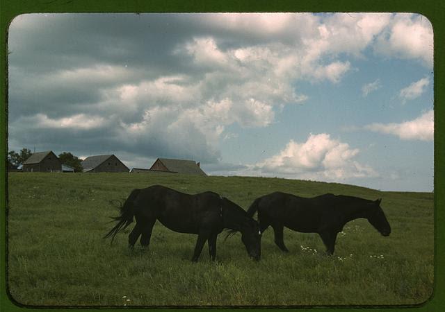 Image, Source: digital file from original slide