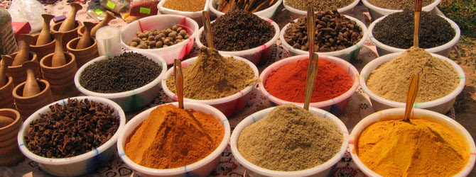 spices-healing-your-gut
