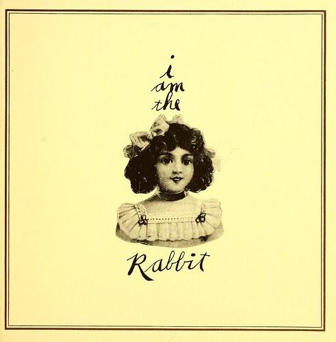 RabbitBox23