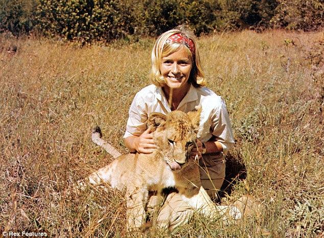 Born Free actress Virginia McKenna reveals how 30 years on ...