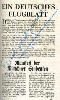 http://www.holocaustresearchproject.org/revolt/images/flugi.jpg