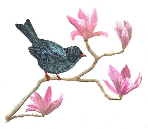 Bird on Magnolia Branch