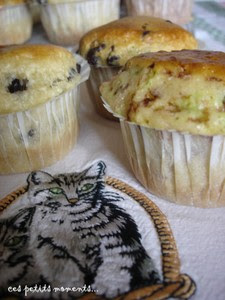 Muffins_Gat__46copie